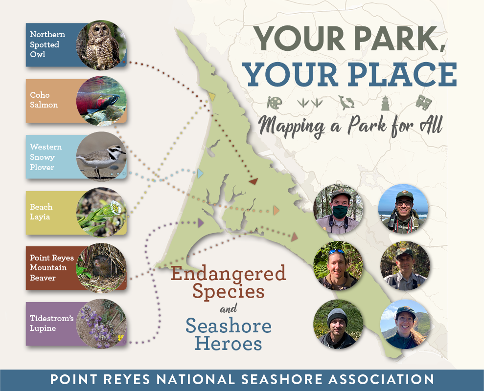 Your Park Your Place graphic with a map of Point Reyes and photos of resource conservation staff